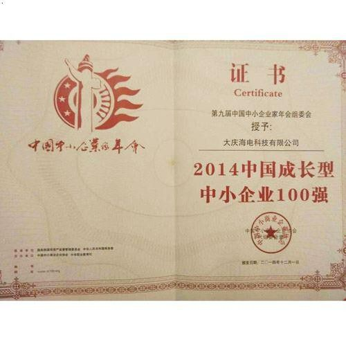 中国中小企业百强证书