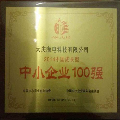 中国中小企业百强奖状